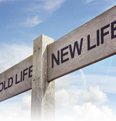 Old Life New Life Signpost